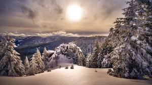 Snow Nature Spruce Sun 2000x1334 Wallpaper