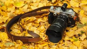 Camera Fall Leaf Olympus 4608x3072 wallpaper