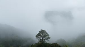Cloud Costa Rica Jungle National Park 3840x2160 Wallpaper