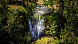 Forest Greenery Waterfall 6000x3375 wallpaper
