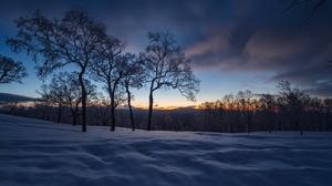 Dark Sunlight Outdoors Winter Snow Ice Cold Nature Trees Sky 3840x2160 Wallpaper