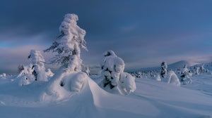 Winter Outdoors Nature Snow Ice Cold Russia 2048x1366 Wallpaper