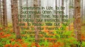 Forest Quote 1600x1200 Wallpaper