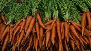 Food Vegetables Carrot Carrots 1920x1080 Wallpaper