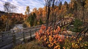 Bridge Canada Fall Forest River 5120x3413 Wallpaper