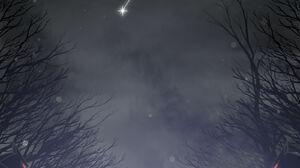 Silhouette Minimalism Night Mist 1600x2264 Wallpaper