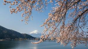 Japan Lake Sakura Spring 2048x1365 wallpaper
