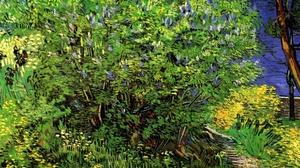 Grass Bush Lilac Painting 2723x2137 Wallpaper