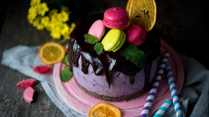 Cake Chocolate Macaron Pastry Still Life 9000x6007 Wallpaper