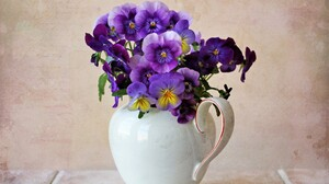 Flower Pansy Pitcher Purple Flower Still Life 2560x1965 Wallpaper