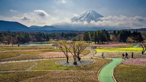 Mount Fuji 2048x1366 Wallpaper