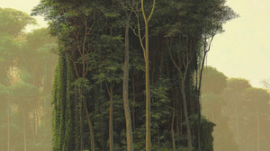 Artwork Plants Painting Forest Lake Trees Jungle 1400x2000 Wallpaper