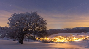 Snow Tree Village Winter 1920x1080 Wallpaper