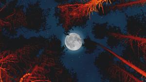 Moon Tree 3840x2160 wallpaper