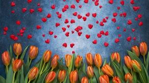 Flower Heart Shaped Orange Flower Petal Tulip 6768x4512 wallpaper