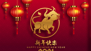 Holiday Chinese New Year 5678x4277 wallpaper