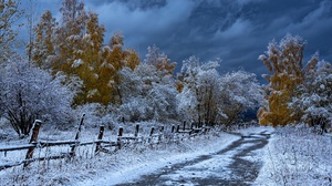 Fall Fence Road Snow Tree 1920x1281 Wallpaper