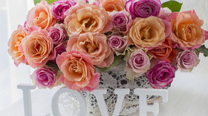 Love Rose Vase 1920x1408 Wallpaper