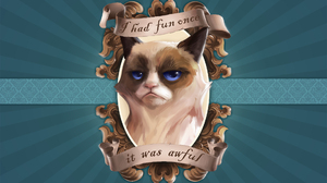Grumpy Cat 1920x1200 Wallpaper