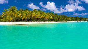 Ocean Sea Turquoise Maldives Palm Tree 3840x2400 Wallpaper