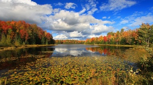 Cloud Fall Foliage Lake Nature Sky 2047x1438 Wallpaper