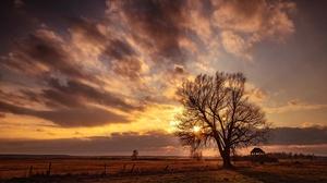 Field Sunset Tree 6148x3746 Wallpaper