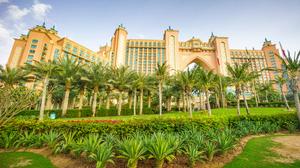Building Dubai Hotel Palm Tree 3400x2250 Wallpaper