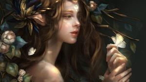 Woman Girl Butterfly Brown Hair Flower Pointed Ears 1920x1309 Wallpaper