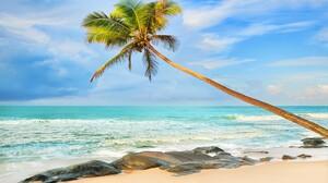 Beach Earth Horizon Ocean Palm Tree Sea Tropical Turquoise 5460x3640 Wallpaper