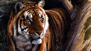 Artistic Big Cat Painting Tiger Wildlife Predator Animal 3011x2000 Wallpaper
