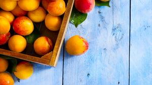 Food Apricot 2560x1600 Wallpaper