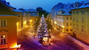 Christmas Christmas Tree Czech Republic 2560x1706 Wallpaper