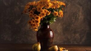 Daisy Flower Pear Still Life Vase Yellow Flower 2048x1280 Wallpaper