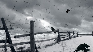 Animal Crow 1280x1024 Wallpaper