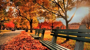 Bench Colorful Fall Leaf Park Tree 5616x3569 Wallpaper