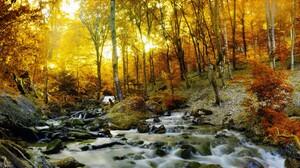 Fall Forest Stone Stream Sunshine 3000x2034 Wallpaper