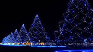 Blue Christmas Christmas Lights Christmas Tree Light Night 1680x1050 Wallpaper