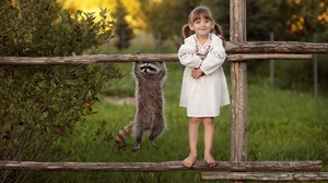 Child Fence Funny Raccoon 1920x1280 Wallpaper