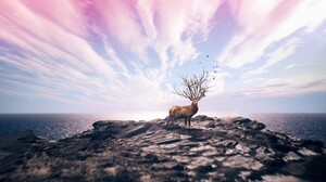 Elk Wildlife Animals Nature Fantasy Art Sky Digital Art Deer 2560x1440 Wallpaper