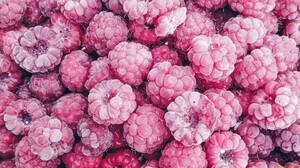 Food Fruit Berries Raspberries Colorful 1920x1080 Wallpaper