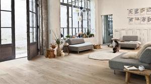 Cat Furniture Living Room Room 5046x3654 Wallpaper