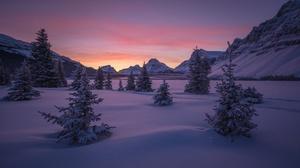 Nature Snow Landscape Tree Sunrise 3600x2400 Wallpaper