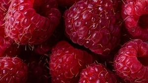 Berry Macro Raspberry 4896x3264 Wallpaper