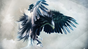 Eagle Bird 2560x1600 Wallpaper
