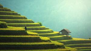 Man Made Rice Terrace 7360x3949 Wallpaper