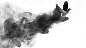 Animal Bird 2116x1416 Wallpaper