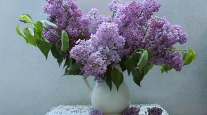 Lilac Nature Plants Flowerpot Still Life Flowers Purple Flower Vase 1920x1200 Wallpaper