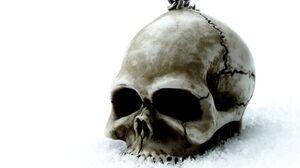 Dark Skull 1920x1440 Wallpaper