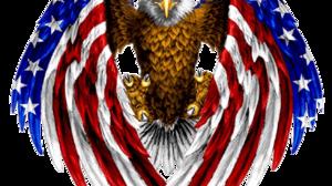 Man Made American Flag 1311x1191 Wallpaper