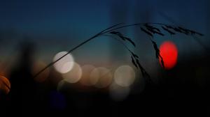 Blur Bokeh 2560x1600 Wallpaper